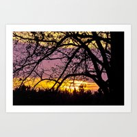 Branches Beholding Beaut… Art Print