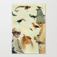 Ornithology Canvas Print