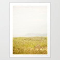 Wild Flowers Lake Michigan South Manitou Art Print
