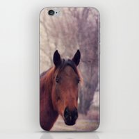 Horse 2 iPhone & iPod Skin