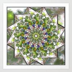 Rainbow Lorikeet Mandala Art Print