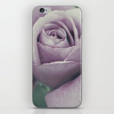 Rose in violet iPhone & iPod Skin