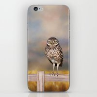 Burrowing Owl iPhone & iPod Skin