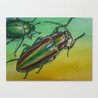 Shinny Beetle Canvas Print