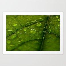 Green Bubbles 2 Art Print