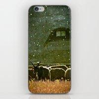 Sheep. iPhone & iPod Skin
