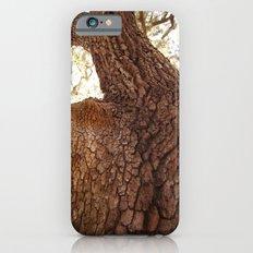 Looking Upwood iPhone 6 Slim Case