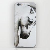 63728 iPhone & iPod Skin