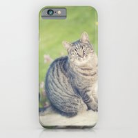 In A Past Life... iPhone 6 Slim Case