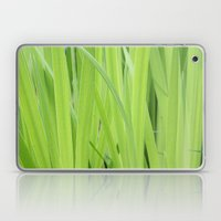 Mystic Green Laptop & iPad Skin