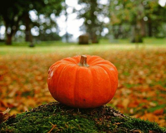 Cemetery pumpkin Art Print