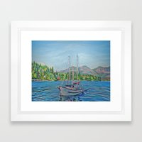 The Murralet At Winter Harbour Framed Art Print
