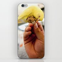 Yellow Parakeet iPhone & iPod Skin