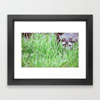 Hidden cat Framed Art Print
