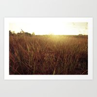 Sweet Sunset Art Print