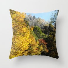Down this road Throw Pillow