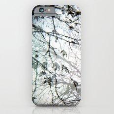 Natural Mystic iPhone 6s Slim Case