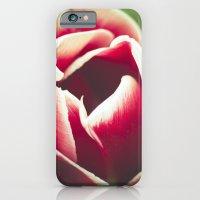 This iPhone 6 Slim Case