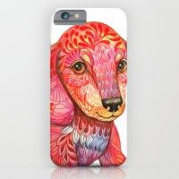 iPhone & iPod Case featuring Mini Dachshund  by ola liola