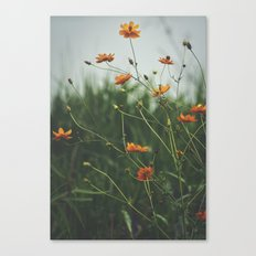 Molecules Canvas Print