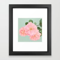 Summer Rose Framed Art Print