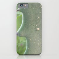 iPhone & iPod Case featuring Cacti by Emele Photography