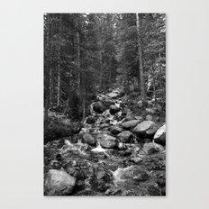 Mountain Creeks Canvas Print
