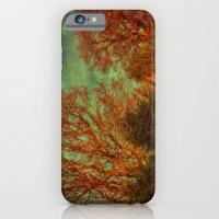 Trees, Trees, Trees iPhone 6 Slim Case