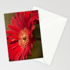 The Gerbera and the Ladybird Stationery Cards