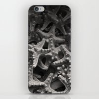 Starfish iPhone & iPod Skin