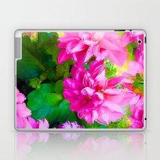 Hot Dahlia's Laptop & iPad Skin