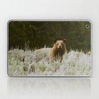Bush Bear Laptop & iPad Skin