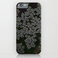 Queen Annes Lace iPhone 6 Slim Case