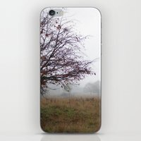 Tree In The Mist iPhone & iPod Skin