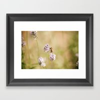 Little Bee Framed Art Print