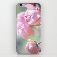 Pink Peony 2 iPhone & iPod Skin