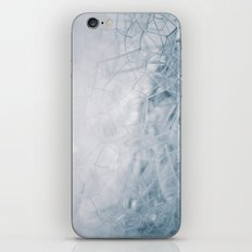 THE BUBBLE NET iPhone & iPod Skin