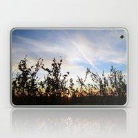 Woven Beauty Laptop & iPad Skin