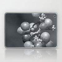 Vino Laptop & iPad Skin