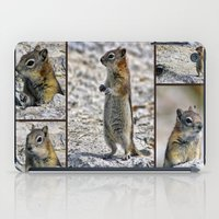 Chipmunk Collage iPad Case