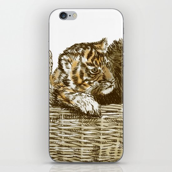 Lions and Tigers and Bears iPhone & iPod Skin