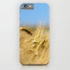 Blue & Gold Slim Case iPhone 6s