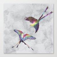 Dreamcatchers Canvas Print