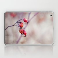 Rose Hips Laptop & iPad Skin