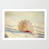 The Whelk III Art Print