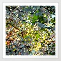 Autumn Tree IX Art Print