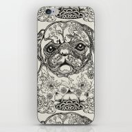 Persian Pug iPhone & iPod Skin