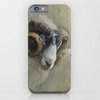 Dougal - A black faced Welsh ram iPhone 6 Slim Case