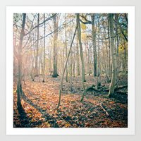 The Forest Art Print