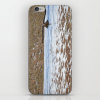 Peregrine Falcon iPhone & iPod Skin